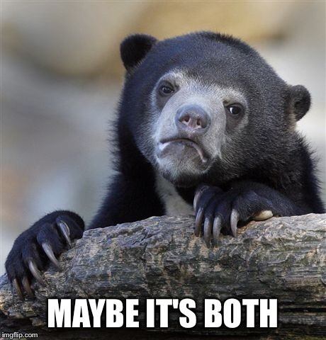 Confession Bear Meme | MAYBE IT'S BOTH | image tagged in memes,confession bear | made w/ Imgflip meme maker