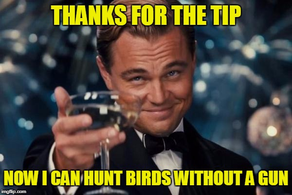 Leonardo Dicaprio Cheers Meme | THANKS FOR THE TIP NOW I CAN HUNT BIRDS WITHOUT A GUN | image tagged in memes,leonardo dicaprio cheers | made w/ Imgflip meme maker
