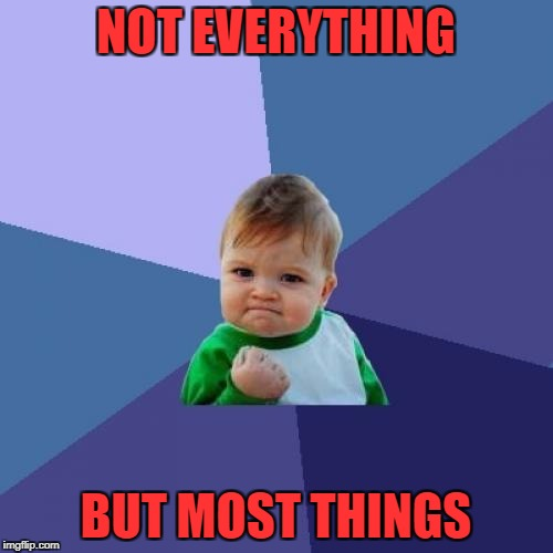 Success Kid Meme | NOT EVERYTHING BUT MOST THINGS | image tagged in memes,success kid | made w/ Imgflip meme maker