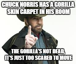 CHUCK NORRIS HAS A GORILLA SKIN CARPET IN HIS ROOM THE GORILLA'S NOT DEAD, IT'S JUST TOO SCARED TO MOVE | made w/ Imgflip meme maker