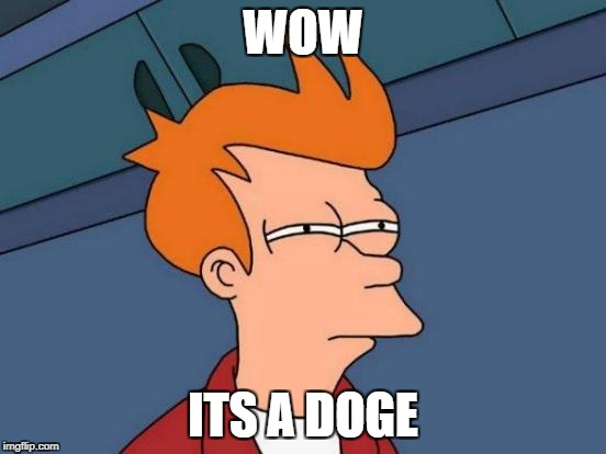 Futurama Fry Meme | WOW ITS A DOGE | image tagged in memes,futurama fry | made w/ Imgflip meme maker