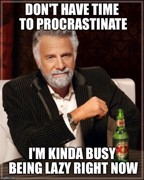 The Most Interesting Man In The World Meme | DON'T HAVE TIME TO PROCRASTINATE I'M KINDA BUSY BEING LAZY RIGHT NOW | image tagged in memes,the most interesting man in the world | made w/ Imgflip meme maker