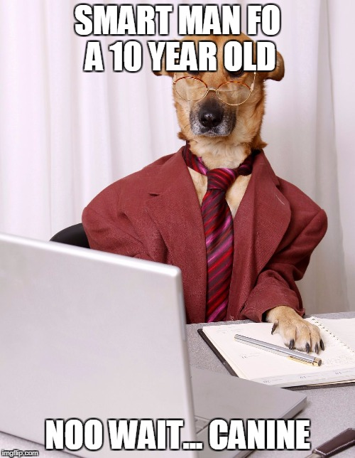 business dog | SMART MAN FO A 10 YEAR OLD NOO WAIT... CANINE | image tagged in business dog | made w/ Imgflip meme maker