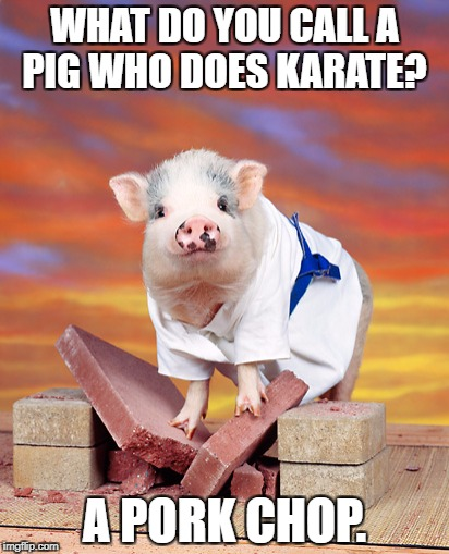 Such A Ham | WHAT DO YOU CALL A PIG WHO DOES KARATE? A PORK CHOP. | image tagged in memes,meme,pig,pigs,karate | made w/ Imgflip meme maker