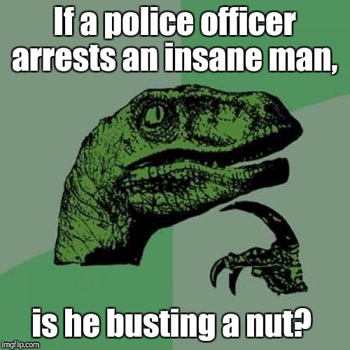 Philosoraptor Meme | If a police officer arrests an insane man, is he busting a nut? | image tagged in memes,philosoraptor | made w/ Imgflip meme maker