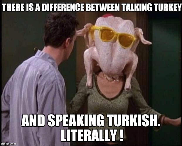 Friends Turkey | THERE IS A DIFFERENCE BETWEEN TALKING TURKEY AND SPEAKING TURKISH. LITERALLY ! | image tagged in friends turkey | made w/ Imgflip meme maker