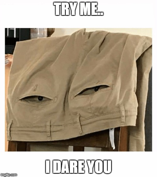 TRY ME.. I DARE YOU | image tagged in glare pants | made w/ Imgflip meme maker