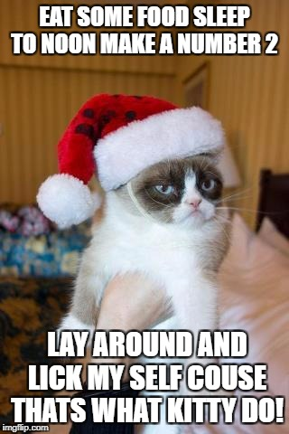 Grumpy Cat Christmas Meme | EAT SOME FOOD SLEEP TO NOON MAKE A NUMBER 2 LAY AROUND AND LICK MY SELF COUSE THATS WHAT KITTY DO! | image tagged in memes,grumpy cat christmas,grumpy cat | made w/ Imgflip meme maker
