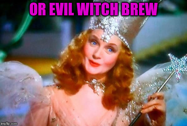 OR EVIL WITCH BREW | made w/ Imgflip meme maker