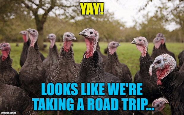 It's not the trip but the destination... :) | YAY! LOOKS LIKE WE'RE TAKING A ROAD TRIP... | image tagged in turkeys,memes,thanksgiving,food | made w/ Imgflip meme maker