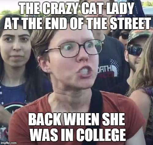 Triggered feminist | THE CRAZY CAT LADY AT THE END OF THE STREET BACK WHEN SHE WAS IN COLLEGE | image tagged in triggered feminist | made w/ Imgflip meme maker
