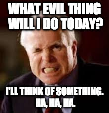 WHAT EVIL THING WILL I DO TODAY? I'LL THINK OF SOMETHING. HA, HA, HA. | image tagged in john mccain | made w/ Imgflip meme maker