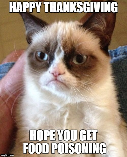 Grumpy Cat Meme | HAPPY THANKSGIVING HOPE YOU GET FOOD POISONING | image tagged in memes,grumpy cat | made w/ Imgflip meme maker