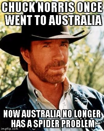 chuck norris killed every spider | CHUCK NORRIS ONCE WENT TO AUSTRALIA NOW AUSTRALIA NO LONGER HAS A SPIDER PROBLEM | image tagged in memes,chuck norris,australia,funny | made w/ Imgflip meme maker