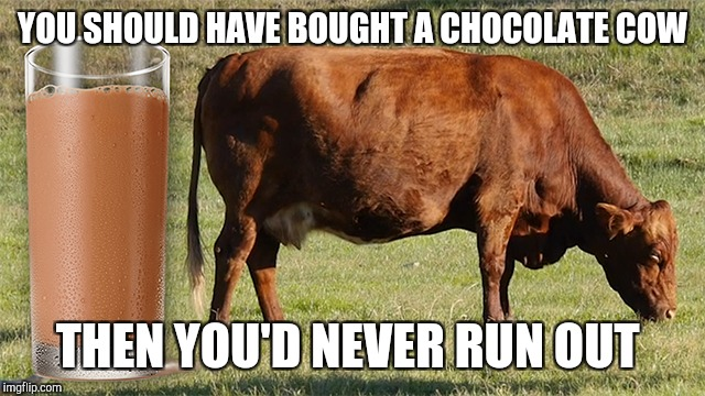 YOU SHOULD HAVE BOUGHT A CHOCOLATE COW THEN YOU'D NEVER RUN OUT | made w/ Imgflip meme maker