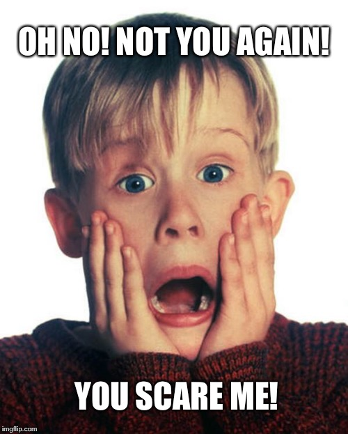 Oh No! Not You Again! You Scare Me! | OH NO! NOT YOU AGAIN! YOU SCARE ME! | image tagged in home alone scream,funny,memes,christmas | made w/ Imgflip meme maker