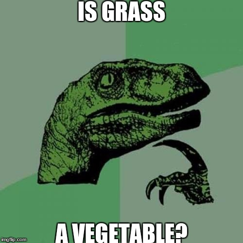 Philosoraptor Meme | IS GRASS A VEGETABLE? | image tagged in memes,philosoraptor | made w/ Imgflip meme maker