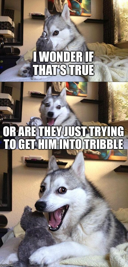 Bad Pun Dog Meme | I WONDER IF THAT'S TRUE OR ARE THEY JUST TRYING TO GET HIM INTO TRIBBLE | image tagged in memes,bad pun dog | made w/ Imgflip meme maker