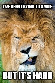 Laughing Lion | I'VE BEEN TRYING TO SMILE BUT IT'S HARD | image tagged in laughter,lion,funny | made w/ Imgflip meme maker