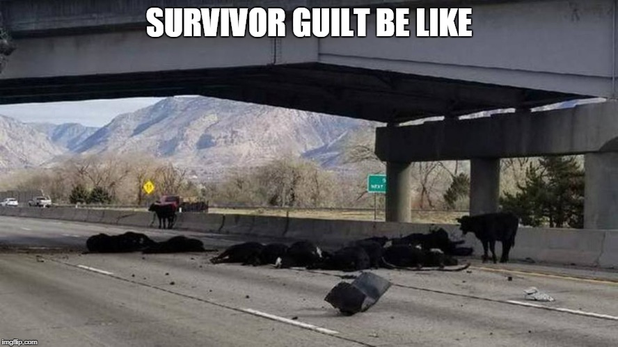 Cows dead on road survivor guilt | SURVIVOR GUILT BE LIKE | image tagged in cows on road dead,cows,dead,road,freeway | made w/ Imgflip meme maker