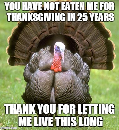 There are other things to eat besides turkey on thanksgiving  | YOU HAVE NOT EATEN ME FOR THANKSGIVING IN 25 YEARS THANK YOU FOR LETTING ME LIVE THIS LONG | image tagged in memes,turkey,happy thanksgiving | made w/ Imgflip meme maker