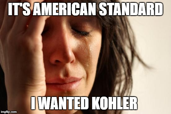 First World Problems Meme | IT'S AMERICAN STANDARD I WANTED KOHLER | image tagged in memes,first world problems | made w/ Imgflip meme maker