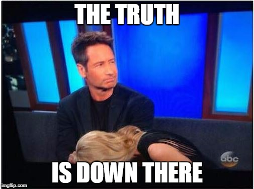 THE XXX-FILES | THE TRUTH IS DOWN THERE | image tagged in xfiles | made w/ Imgflip meme maker