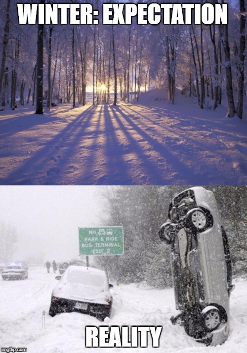Winter | WINTER: EXPECTATION REALITY | image tagged in funny memes,memes,winter is coming,misery,expectation vs reality | made w/ Imgflip meme maker