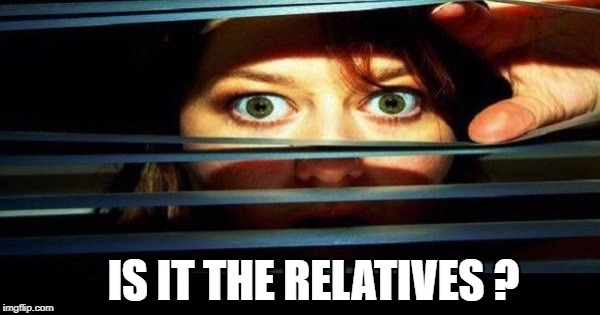 IS IT THE RELATIVES ? | image tagged in holidays,relatives,guess who,that face you make when | made w/ Imgflip meme maker