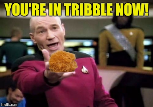 Picard Wtf Meme | YOU'RE IN TRIBBLE NOW! | image tagged in memes,picard wtf | made w/ Imgflip meme maker