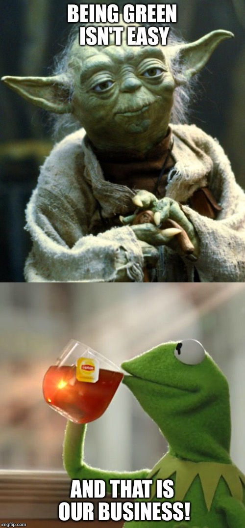 BEING GREEN ISN'T EASY AND THAT IS OUR BUSINESS! | image tagged in kermit the frog,yoda wisdom | made w/ Imgflip meme maker