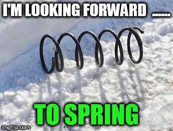 I'M LOOKING FORWARD  ...... TO SPRING | image tagged in spring in snow | made w/ Imgflip meme maker