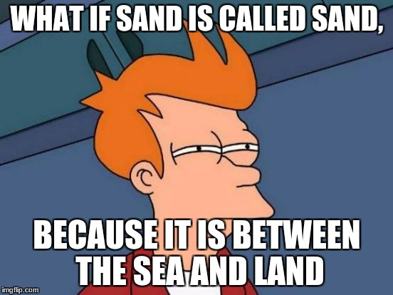 Futurama Fry Meme | WHAT IF SAND IS CALLED SAND, BECAUSE IT IS BETWEEN THE SEA AND LAND | image tagged in memes,futurama fry | made w/ Imgflip meme maker