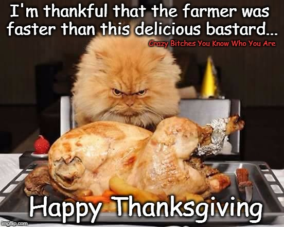 I'm thankful that the farmer was faster than this delicious bastard... Crazy B**ches You Know Who You Are Happy Thanksgiving | image tagged in thanksgiving,cat | made w/ Imgflip meme maker