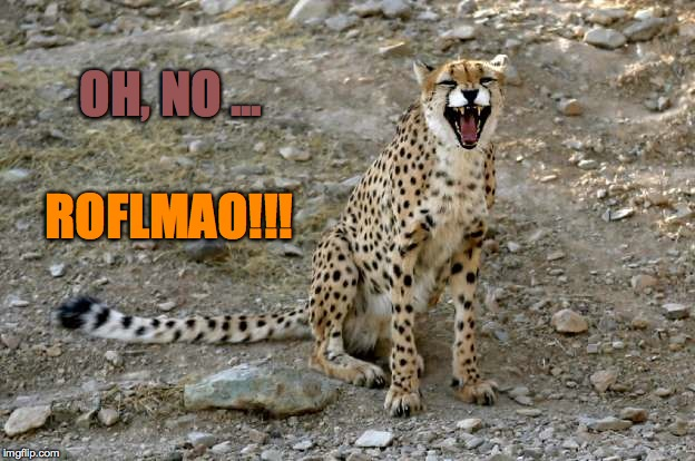OH, NO ... ROFLMAO!!! | made w/ Imgflip meme maker
