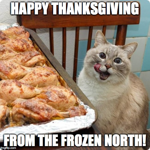 To My ImgFlip Buds In The USA :-) | HAPPY THANKSGIVING FROM THE FROZEN NORTH! | image tagged in chicken lover | made w/ Imgflip meme maker