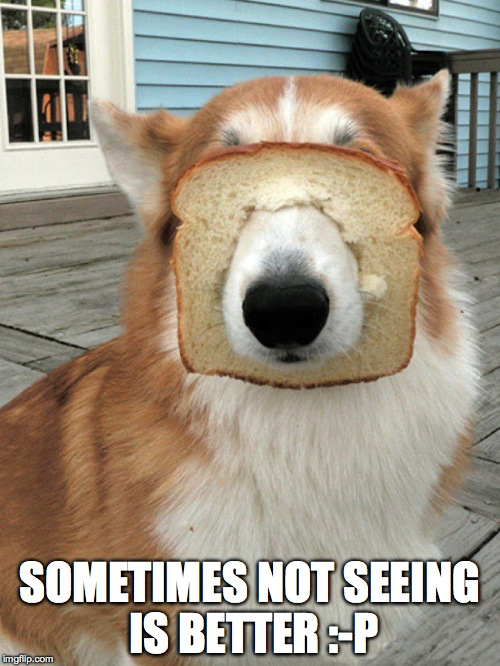 breakfast doggo | SOMETIMES NOT SEEING IS BETTER :-P | image tagged in breakfast doggo | made w/ Imgflip meme maker