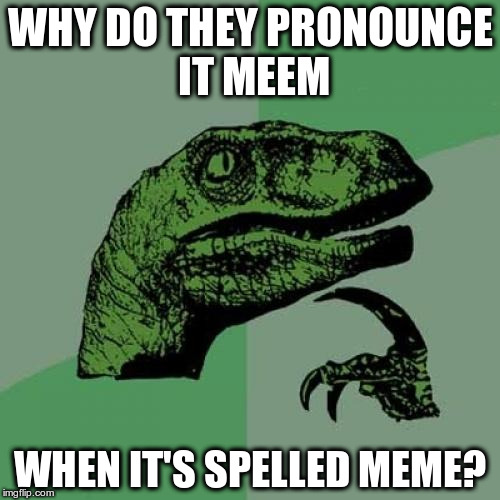 Philosoraptor Meme | WHY DO THEY PRONOUNCE IT MEEM WHEN IT'S SPELLED MEME? | image tagged in memes,philosoraptor | made w/ Imgflip meme maker