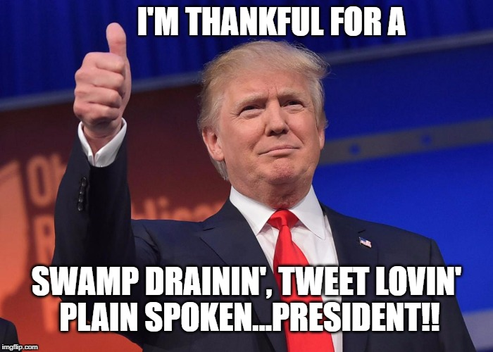 donald trump | I'M THANKFUL FOR A SWAMP DRAININ', TWEET LOVIN' PLAIN SPOKEN...PRESIDENT!! | image tagged in donald trump | made w/ Imgflip meme maker