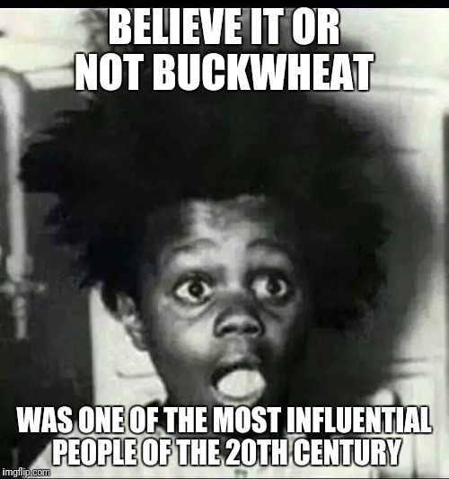 BELIEVE IT OR NOT BUCKWHEAT WAS ONE OF THE MOST INFLUENTIAL PEOPLE OF THE 20TH CENTURY | image tagged in buckwheat surprised | made w/ Imgflip meme maker