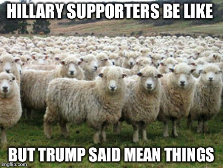 HILLARY SUPPORTERS BE LIKE BUT TRUMP SAID MEAN THINGS | image tagged in hillary supporters | made w/ Imgflip meme maker