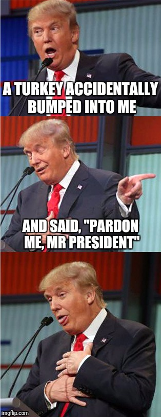 "Bad Pun Trump | A TURKEY ACCIDENTALLY BUMPED INTO ME AND SAID, ""PARDON ME, MR PRESIDENT"" 