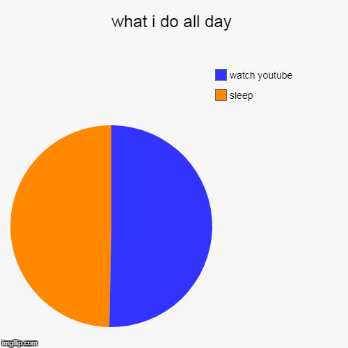 what i do all day | sleep, watch youtube | image tagged in funny,pie charts | made w/ Imgflip pie chart maker