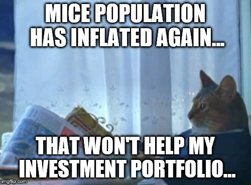 Investment portfolio isn't doing well... | MICE POPULATION HAS INFLATED AGAIN... THAT WON'T HELP MY INVESTMENT PORTFOLIO... | image tagged in memes,i should buy a boat cat | made w/ Imgflip meme maker