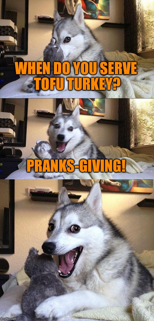 Puns for the occasion ;D thxgiving pun 2 | WHEN DO YOU SERVE TOFU TURKEY? PRANKS-GIVING! | image tagged in memes,bad pun dog,thanksgiving,turkey,tofu,pranks | made w/ Imgflip meme maker