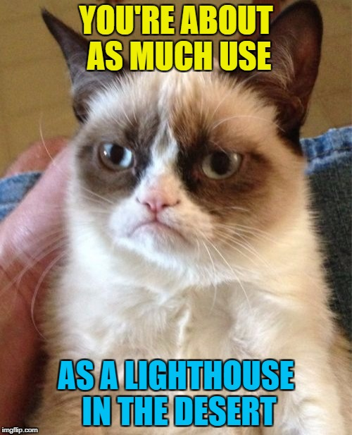 Deserts - so hot right now :) | YOU'RE ABOUT AS MUCH USE AS A LIGHTHOUSE IN THE DESERT | image tagged in memes,grumpy cat,lighthouse,desert,useless | made w/ Imgflip meme maker