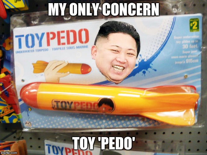 North Korea Rocket  | MY ONLY CONCERN TOY 'PEDO' | image tagged in north korea rocket | made w/ Imgflip meme maker