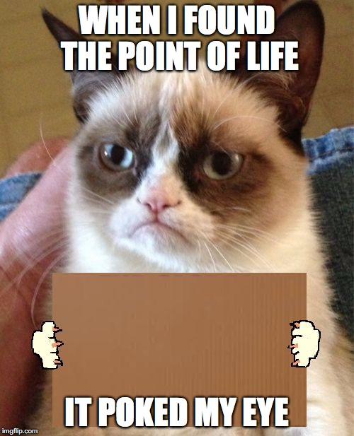 Grumpy Cat Cardboard Sign | WHEN I FOUND THE POINT OF LIFE IT POKED MY EYE | image tagged in grumpy cat cardboard sign | made w/ Imgflip meme maker