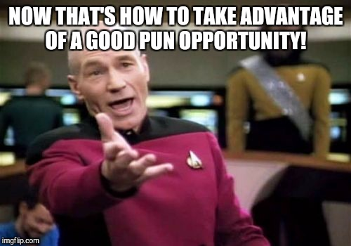 Picard Wtf Meme | NOW THAT'S HOW TO TAKE ADVANTAGE OF A GOOD PUN OPPORTUNITY! | image tagged in memes,picard wtf | made w/ Imgflip meme maker