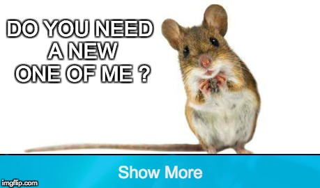 do you need a new mouse? | DO YOU NEED A NEW ONE OF ME ? | image tagged in memes,funny memes | made w/ Imgflip meme maker